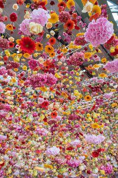 Hanging Flowers, Love Flowers, Dried Flowers, Beautiful Flowers, Art Floral, Deco Floral, Flower Installation, Spring Awakening, Flower Aesthetic