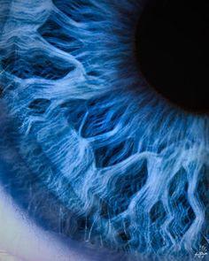 (Blue iris of a human eye. Human Eye, Human Body, Foto Macro, Macro Photo, Le Grand Bleu, Azul Indigo, Mood Indigo, Behind Blue Eyes, Everything Is Blue