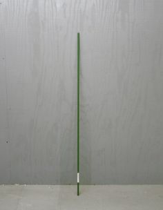 4 Feet Long Green Steel Garden Stake by Garden Zone. $0.92. 4 Feet Tall. Natural Green Color. Coated for Extended Life. Supports Trees & shrubs