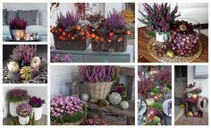 Decoration, Plants, Design, Balcony, Decor, Decorations, Plant, Decorating, Dekoration
