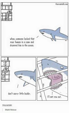 Funny pictures about Shark Rescue. Oh, and cool pics about Shark Rescue. Also, Shark Rescue photos. Funny Shit, Stupid Funny Memes, Funny Relatable Memes, Haha Funny, Funny Cute, Hilarious, Funny Stuff, Funniest Memes, Super Funny