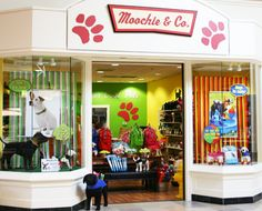 Moochie & Co. - favorite puppy boutique in Pittsburgh!