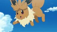 Eevee Blasting off again Eevee Wallpaper, Pokemon Funny, Team Rocket, Funny Cute, Crossover, Pikachu, Moon, Animation, Puppies