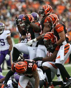 This is what a pack of Bengals hunting looks like...Who Dey!!!