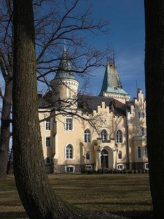 Pałac w Wielkiej Lipie. Zamek Elizy - zbudowany w miejscu starszej rezydencji szlacheckiej w 1899r. w stylu neogotyckim. Fundatorem i pierwszym właścicielem był ówczesny właściciel Wielkiej Lipy - Alfred von Waldenburg-Würben. Swój przydomek (Elsenburg) pałac zyskał na cześć żony właściciela - Elizy Karoliny von Krohn. Nad wejściem znajduje się herb rodzin obojga małżonków. Od 1994 właścicielem pałacu jest Ferdinando Caggiati, który wyremontował pałac i nadał mu dawną świetność.