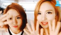Mina and Cheyoung Gifs, Lost Soul, One In A Million, Nayeon, Girl Group, My Life, Singing, Parents, Kpop
