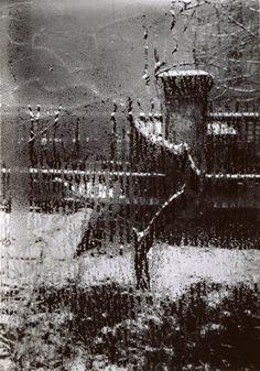 The Interior Prospect: Josef Sudek - The window filter