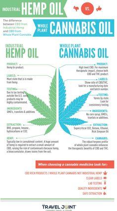 Hemp CBD Oil vs. Cannabis CBD Oil | TheTravelJoint.com (scheduled via http://www.tailwindapp.com?utm_source=pinterest&utm_medium=twpin)
