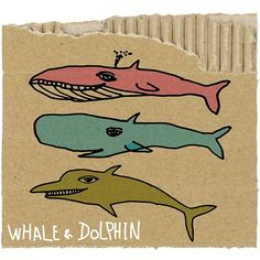 whale&dolphin  Illustration