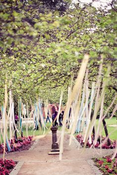 ribbon streamers in the trees