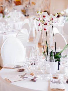 Die 29 Besten Bilder Von Hochzeit Katja Round Wedding Tables