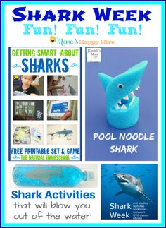 "This is an awesome collection of shark week fun learning activities and crafts to enjoy with your kids! Also, ""A Little Bird Told Me"" Wednesday link party! Preschool Projects, Preschool Learning, Fun Learning, Learning Activities, Shark Activities, Craft Activities For Kids, Family Activities, Summer Fun For Kids, Summer Beach"