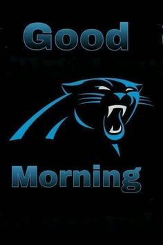 Compare Carolina Panthers Plates prices and save big on Panthers Plates and Carolina  Panthers Kitchenware by scanning prices from top retailers. c079dea35
