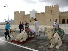 La Goulette Cruise Terminal and Camels