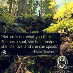 Nature is not what you think. She has a soul, she has freedom, she has love, and she can speak... - Fyodor Tyuchev -