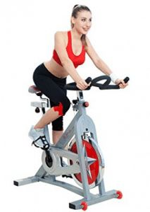 Sunny Health & Fitness Pro Indoor Cycling Bike with 40 LB Flywheel, Caged Pedals, Adjustable Seat and Handlebar, Micro-Adjustable Resistance with Dual Felt Brake Pads Best Workout Shoes, Best Exercise Bike, Upright Exercise Bike, Spin Bike Workouts, Exercise Bike Reviews, Fun Workouts, At Home Workouts, Upright Bike, Indoor Cycling Bike