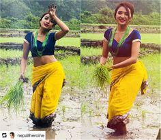 "Nepali Heroine on Twitter: ""असार लाग्यो है यसो रोपाई पनि गरौ मानो खाएर मुरी उब्जाउने बेला होला..… "" Image Model, Background Images Hd, Bollywood Girls, Beautiful Girl Photo, Perfect Timing, Cute Beauty, Party Wear Sarees, Celebrity Pictures, Girl Photography"