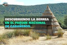 Hoy nos acercamos a conocer el Parque Nacional de Cabañeros, uno de los pocos bosques mediterráneos que sobreviven en Europa.