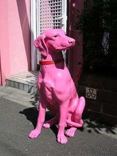 A pink dog in front of a pink gate by tanakawho