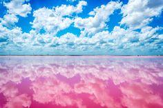 Las coloradas, Yucatán|Fuente de la imágen: www.playasmexico.com.mx