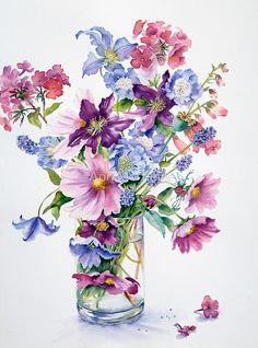 Clematis and Cosmos by Ann Mortimer