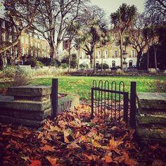 Canonbury Square (: @kvasnovsky) #islington #angel #london #thisislondon #ilovelondon #pictureangel #pictureislington #igersislington #igerslondon #ig_london  #highbury #northlondon by islington_london