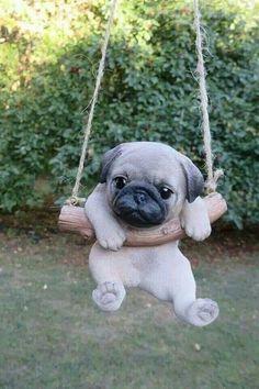 Super Cute Puppies, Baby Animals Super Cute, Cute Baby Dogs, Cute Little Puppies, Cute Pugs, Cute Little Animals, Cute Funny Animals, Adorable Kittens, Funny Pugs