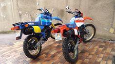 Enduro '80 Honda XL 600R Paris Dakar Yamaha Tenerè 600 1VJ