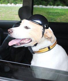 Look at this Alcott Traveler Adventure Helmet on #zulily today!