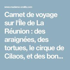 Carnet de voyage sur l'Île de La Réunion : des araignées, des tortues, le cirque de Cilaos, et des bonnes adresses - Le blog de Madame Oreille