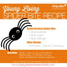 Baby-Steps-To-Essential-Oils-Spider-Bite-Recipe with Young Living Essential Oils Follow me on facebook at Oils for Life.