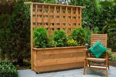 Free plans for building this privacy planter.