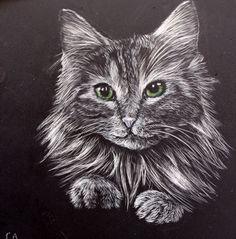 Kitty Green Eyes Scratch Art Celeste Myart