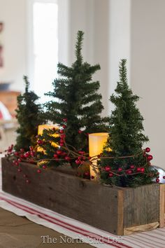 Christmas Decorating - a vintage wooden box with Christmas trees, pillar candles (battery operated) and berries, create a festive Christmas centerpiece - via The North End Loft: A blog about cottage living in the Historic North End of Boise, Idaho.