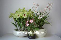 Clay flower - Colors, shapes and sizes ... Agyagvirág - Színek, formák, méretek... Clay Flowers, Vase, Plants, Home Decor, Flowers, Decoration Home, Room Decor, Plant, Vases