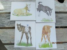 Vintage Current Stationary Animals Horses Colts Note Cards  Assortment lot of 4 Linda K Powell by EvenTheKitchenSinkOH on Etsy