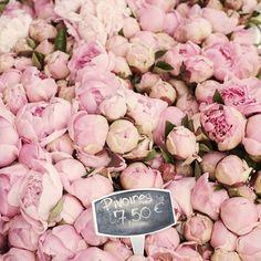 Sunday morning blooms. #ththwedding #bridesmaid #bridalbouquet #blooms #sunday #sunday #sundaymorning #peonies
