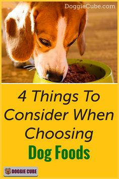 There are several factors to consider when choosing the right food for your dog. Different dogs have different nutritional needs at different stages in their lives. Here are some things to consider when selecting the food you'll give your dog. Dog Nutrition, Dog Diet, Guide Dog, Different Dogs, Medical Problems, Dog Care Tips, Homemade Dog Food, Nutritious Meals, Dog Grooming