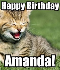 fd950c8dedd66dc071b4acefebc5c3be happy birthdays birthday cake sharon happy birthday sharon may your day be,Happy Birthday Amanda Meme