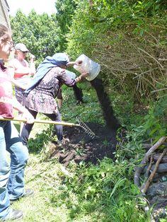 Physical Land Healing - converting a lawn into a garden!