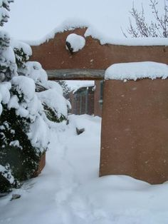 Late winter blast in Santa Fe by agomm | Weather Underground