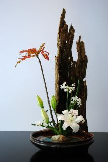 Ikebana: oh, COOL -- I love the texture contrast!