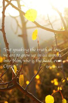 Speak the truth in love