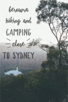 Wild Wander in Berowra: Camping and Hiking Near Sydney Camping Spots, Camping And Hiking, Wander, Travel Inspiration, Sydney, National Parks, Australia, World, Spin