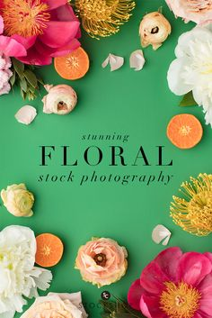 Citrus colored floral styled stock from the SC Stockshop! Pink, fuschia, yellow and orange florals. Styled stock for creative small business owners!
