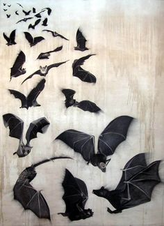 Bats bat-flight-of-bats Animal painting by Thierry Bisch