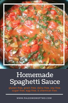 In an hour you will be enjoying this homemade, healthy, and hearty spaghetti sauce. Made with 100% vegetables and spices. This is great in lasagna or topped over meatballs! Paleo, gluten-free, grain-free, dairy-free, soy-free, sugar-free, egg-free, chemical and preserve free.