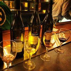 Sherry anyone? #sherrylovers #lustau Sherry Wine, White Wine, Beer Bottle, Wines, Lust, Alcoholic Drinks, Instagram, Wine Cellars, White Wines