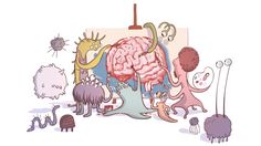 """Could the microbes that inhabit our guts help explain that old idea of """"gut feelings?"""" There's growing evidence that gut bacteria really might influence our minds."""