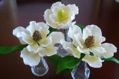 {A pretty trio of Magnolias by Liz Hunt}